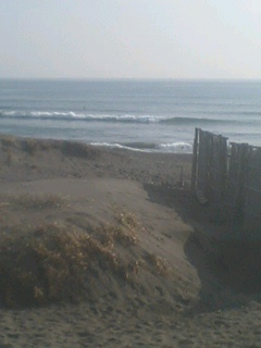 今日は小波です。